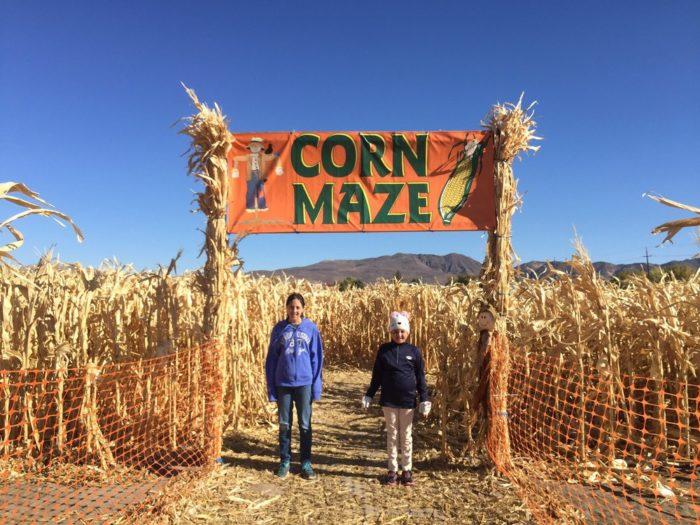 best corn mazes nevada