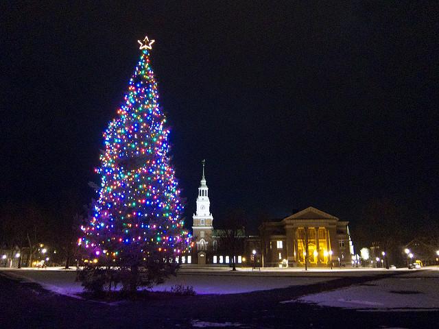 Beautiful Christmas Light Displays