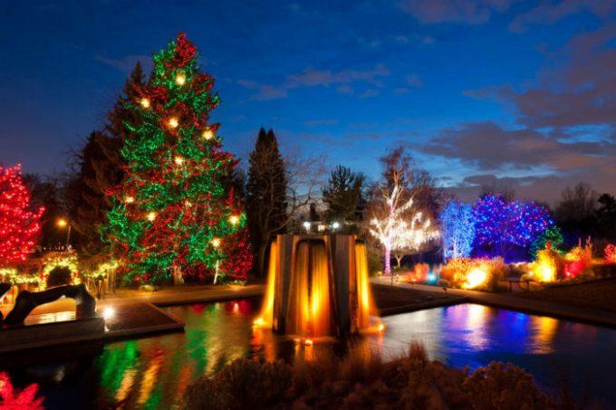 11 best christmas light displays in denver 2017 - Best Christmas Lights Denver