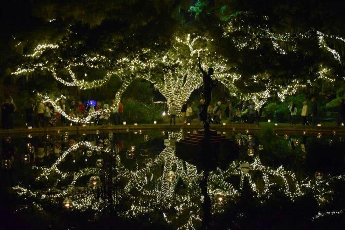 Riverbanks Zoo Christmas Lights