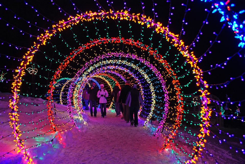 Madison Zoo Lights