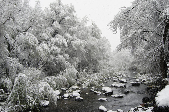 11. Even Oak Creek looks chilling with gray skies, snow-covered trees, and freezing creek water.