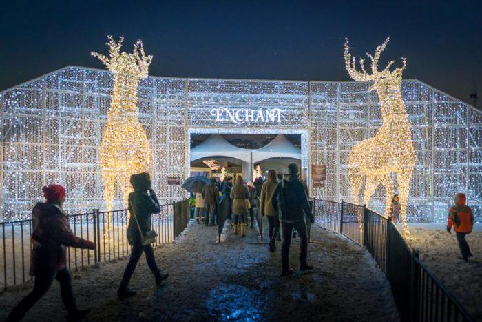 Christmas Lights Texas