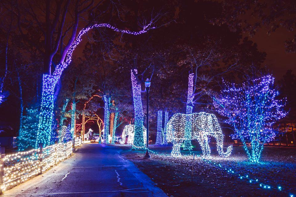 Zoo Lights Houston Zoo