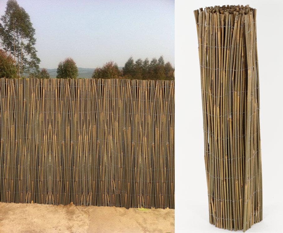 canisse en bambou entier largeur 3 m