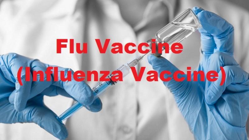 Flu vaccine market (flu vaccine)