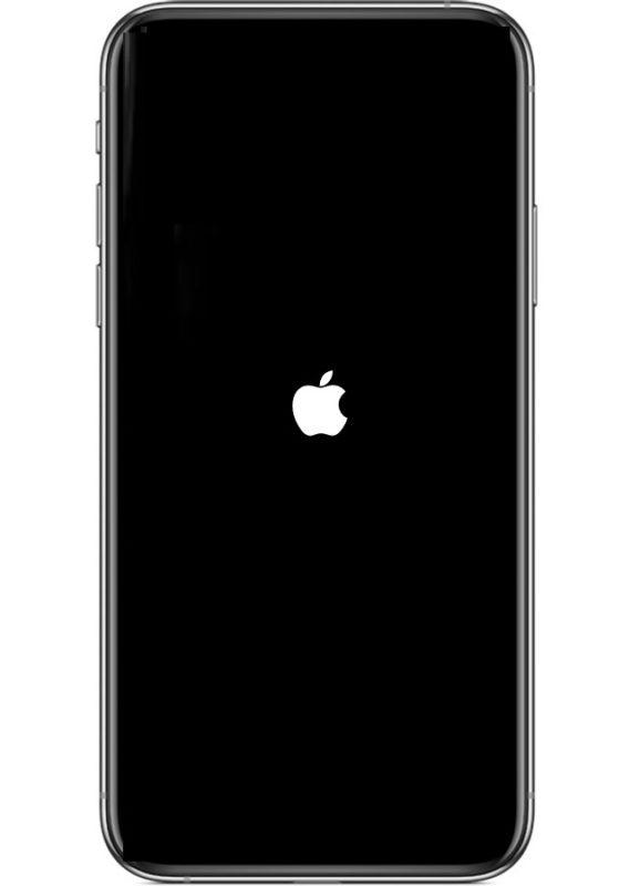Принудительный перезапуск iPhone 11 или iPhone 11 Pro выглядит так с логотипом Apple на экране