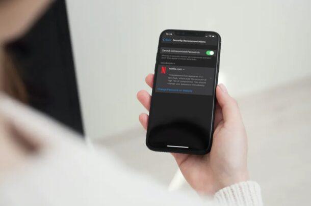 Как проверить рекомендации по безопасности паролей на iPhone и iPad