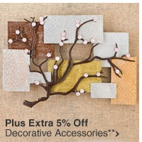 Plus Extra 5% Off Decorative Accessories**
