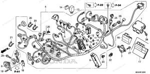 Honda Motorcycle 2012 OEM Parts Diagram for Wire Harness