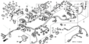 Honda Motorcycle 2005 OEM Parts Diagram for Wire Harness