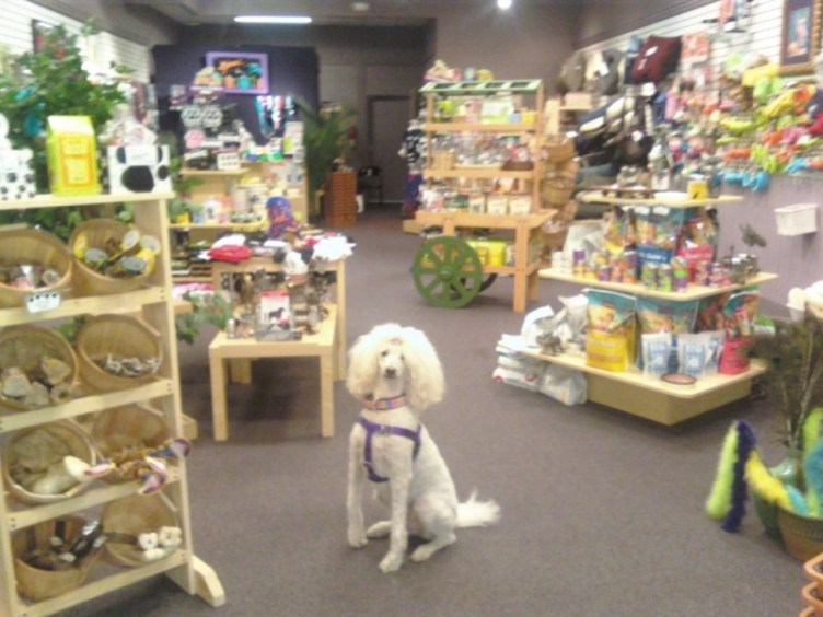 New Pet Store will Open in Palisades Center Mall to ...