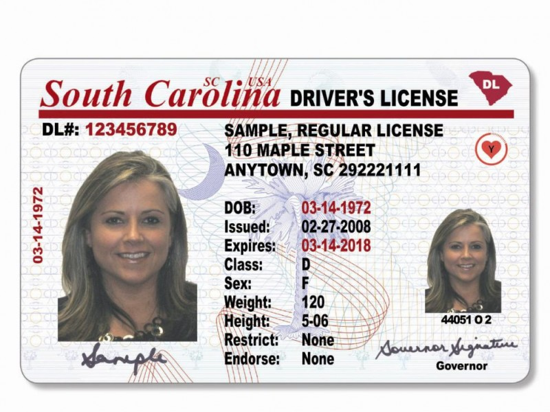 Carolina 2013 North License Drivers North Carolina Drivers License 2013