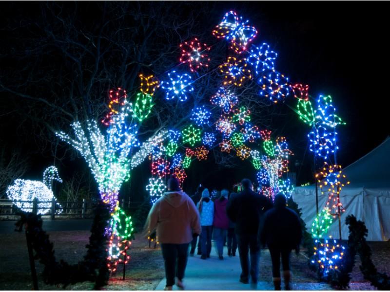 Zoo Lights Birmingham