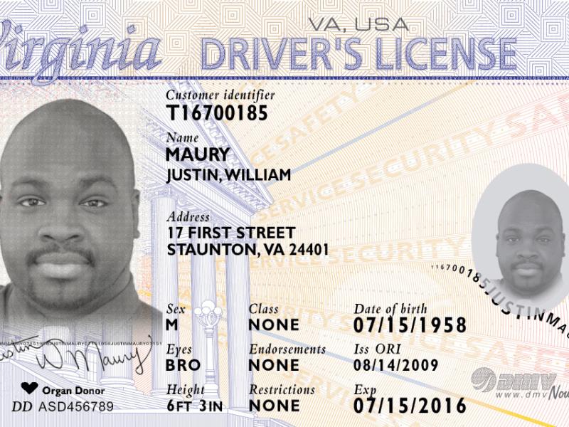 License North Drivers Carolina North Carolina Drivers 2013 2013 License