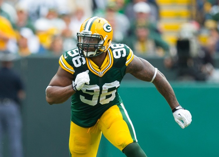 Mike Neal of the Green Bay Packers