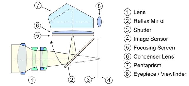 DSLR Cross Section