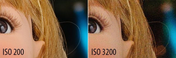 ISO 200 and ISO 3200 Comparison