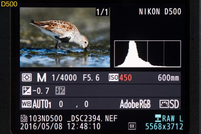 D500 monitor image details