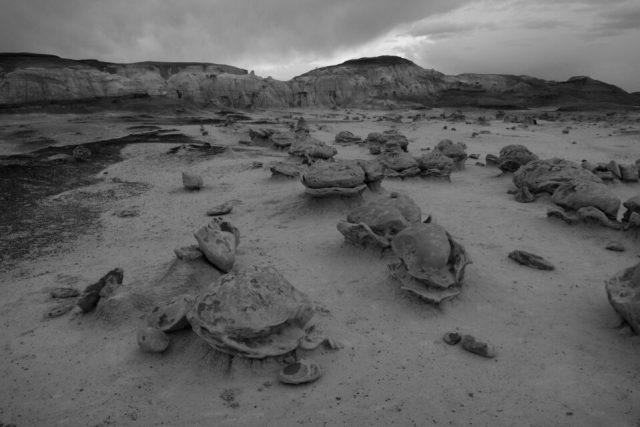 Black and White Landscape Photo with Canon SL2