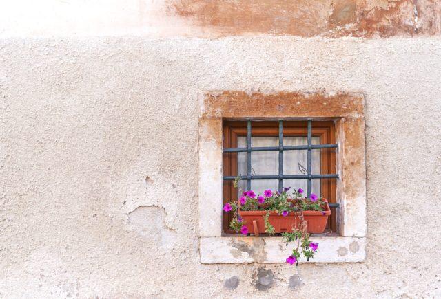 22. Flower Pot In The Window