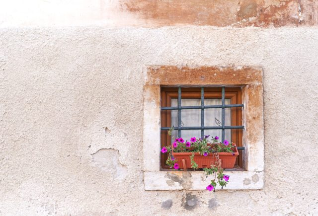 22. Flower Pot In The Window