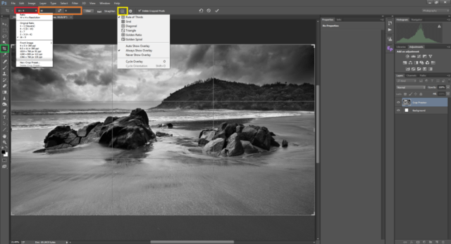 Crop Tool in Photoshop