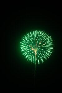 Green firework against black sky