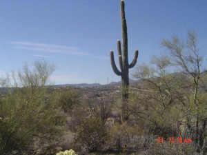 33080 S MATALA Way, 1, Black Canyon City, AZ 85324