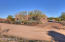 29703 N 146TH Street, Scottsdale, AZ 85262