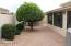 Back Yard w/ 2 fruit trees