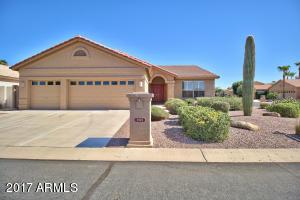 9849 E AMENITY Drive, Sun Lakes, AZ 85248