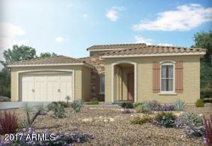 41881 W SPRINGTIME Road, Maricopa, AZ 85138
