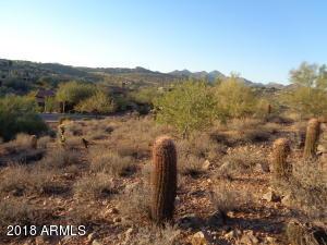 10039 N MCDOWELL VIEW Trail, 25, Fountain Hills, AZ 85268