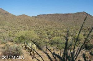 890XX N 80th Street, -, Cave Creek, AZ 85331
