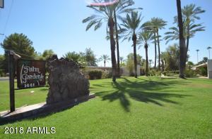 1441 E MARYLAND Avenue, 5, Phoenix, AZ 85014