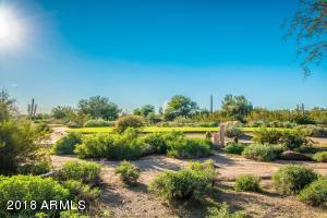 19475 N GRAYHAWK Drive, 1038, Scottsdale, AZ 85255