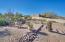 17341 E GRANDE Boulevard, Fountain Hills, AZ 85268