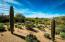 Walk through a garden of 18 saguaros in various stages of growth. Nice views as the property borders on 5 acre zoning with lots of open space.