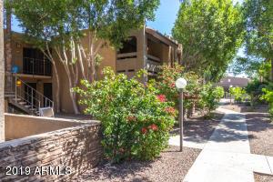 3825 E CAMELBACK Road, 205, Phoenix, AZ 85018