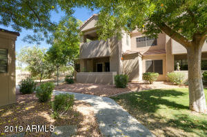 5950 N 78th Street, 232, Scottsdale, AZ 85250