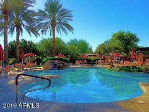 Community Pool #1