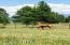 24 fenced acres of beautiful grass pastures. A true horse heaven