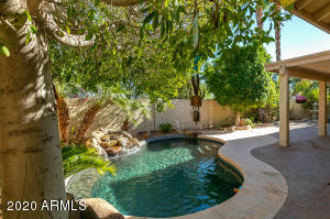 3801 E WINDSONG Drive, Phoenix, AZ 85048