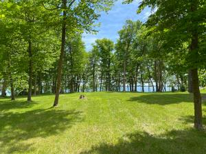 14439 HWY 5, Lake Park, MN 56554