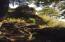 Lot #7 Baker Ranch Road, Trinidad, CA 95570