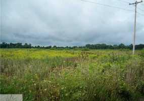 5170 Davis, Grand Ledge, MI 48876, ,Vacant Land,For Sale,Davis,85329