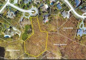 2461 Overglen Court, East Lansing, MI 48823, ,Vacant Land,For Sale,Overglen,232287