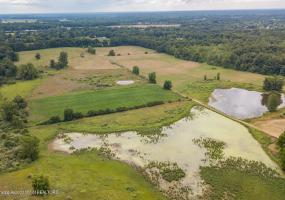 Vl Barry Road, Williamston, MI 48895, ,Vacant Land,For Sale,Barry,233675