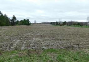 Vl Wright Road, Eagle, MI 48822, ,Vacant Land,For Sale,Wright,235621